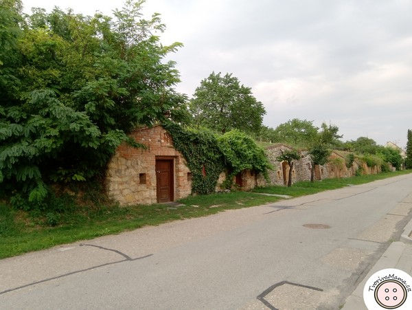 Wine cellars in Nosislav